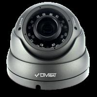 Антивандальная купольная видеокамера DiViSat DVC-D39V