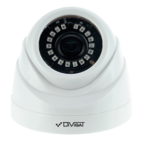 Купольная камера DiViSat DVC-D89