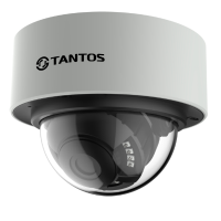 Купольная уличная камера с функцией день/ночь и ИК подсветкой Tantos TSi-Vn225VP (2.8-12)
